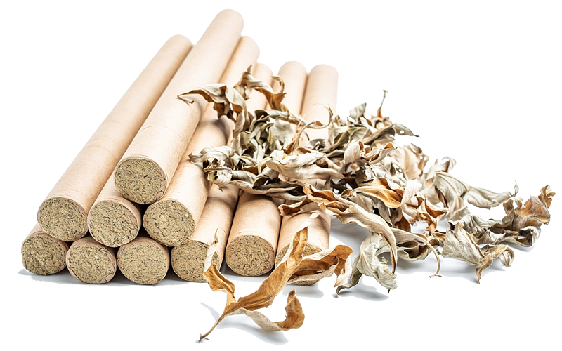 moxibustion therapy with chinese acupuncture in Toronto